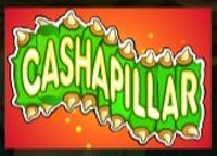 Cashapillar Wild