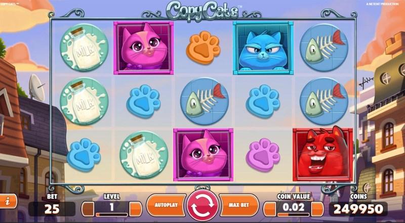 Copy Cats 800